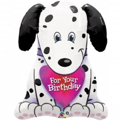 large helium filled dalmatian foil balloon from cardiff balloons