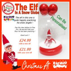 The Elf In A Snow Globe